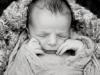 newbornweb045