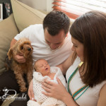 Welcome baby William! |Royal Oak Newborn/Family Photographer