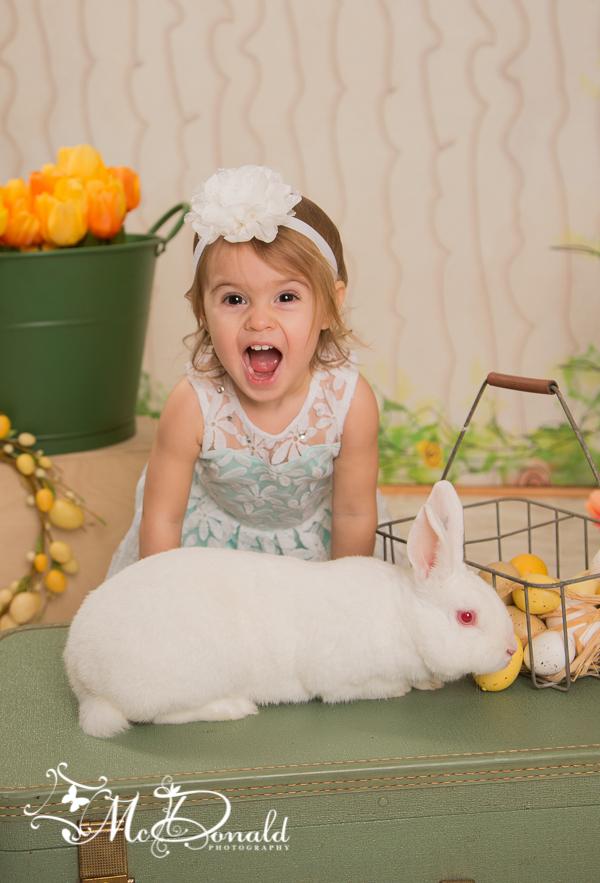 EasterWEB-12
