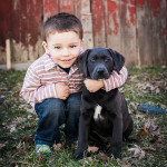 Brantley | Holly, Michigan Children Photographer
